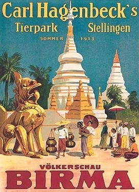 Burmese at German Zoo
