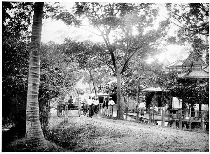 Wingaba Road, Rangoon c. 1905